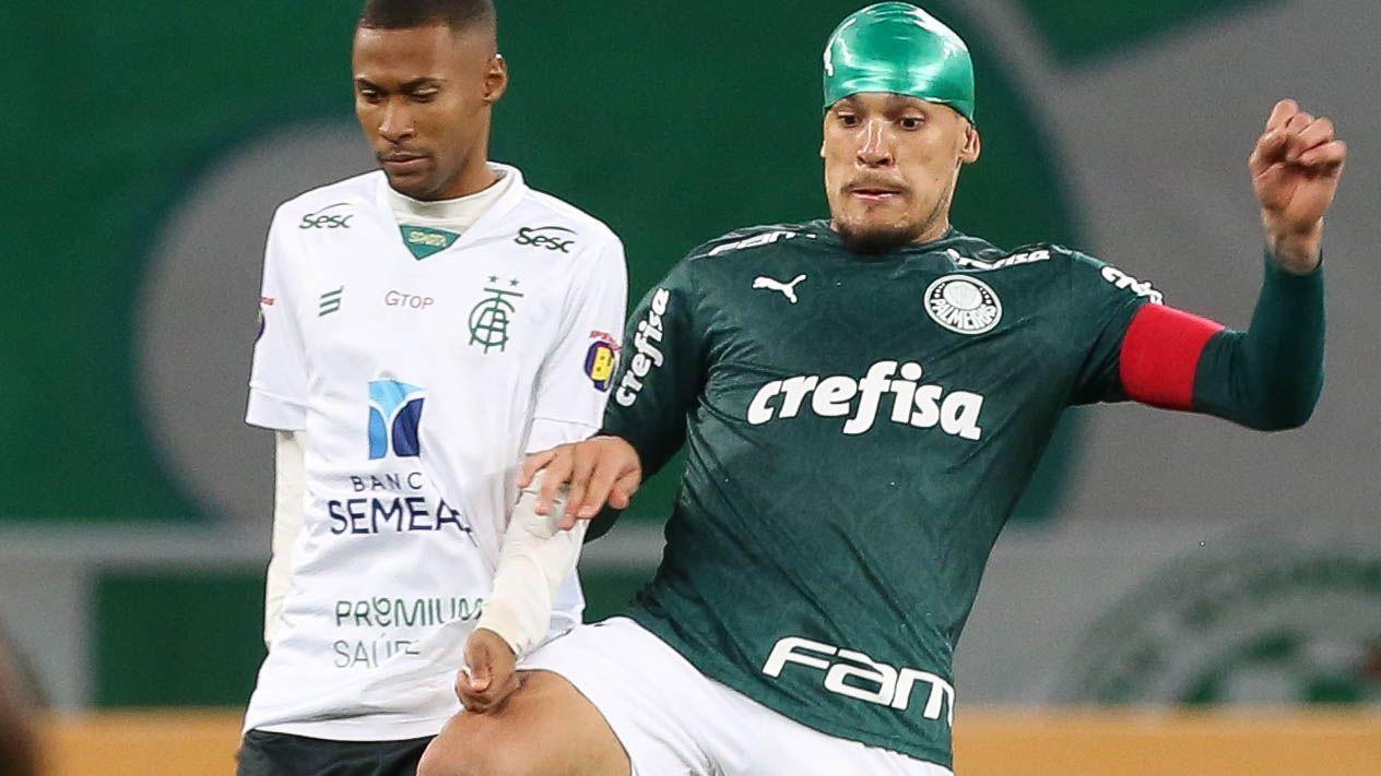 Ademir e Gustavo Gómez disputam bola em partida do Palmeiras